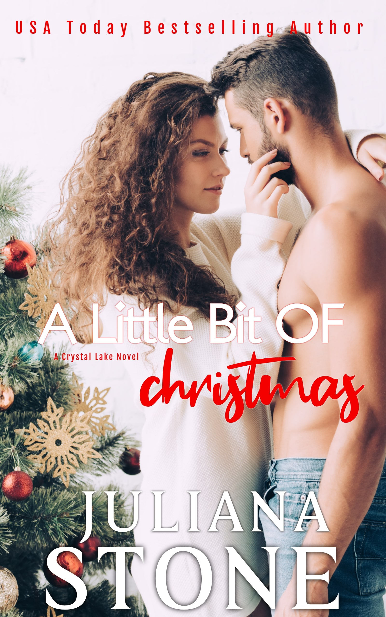 A Little Bit Of Christmas by Juliana Stone